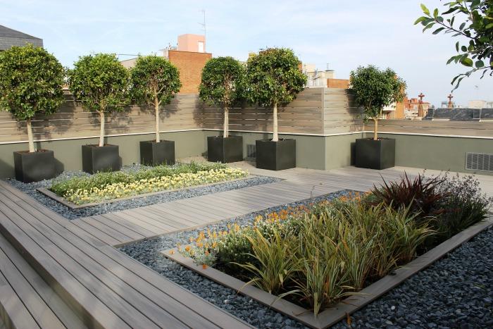C mo construir un jard n en la terraza y un sorteo del - Plantas para terrazas con mucho sol ...