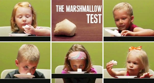 marshmello test