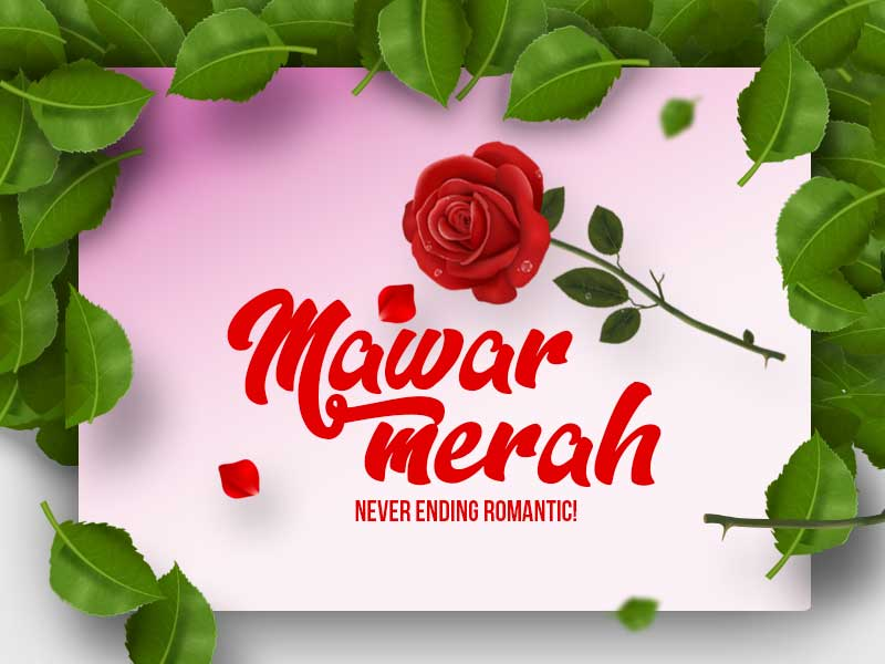 Mawar Merah Never Ending Romantic