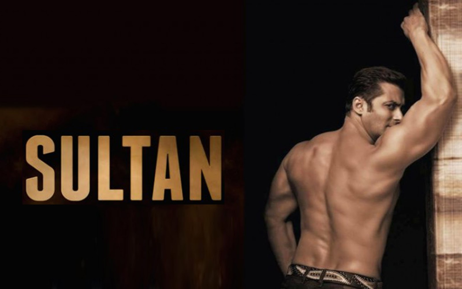 Sultan Movie Amazing Hd Wallpaper Photos Latestwallpaper99