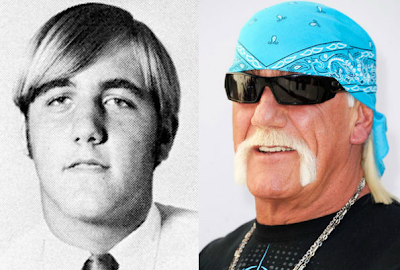 Terry Bollea ( Hulk Hogan)