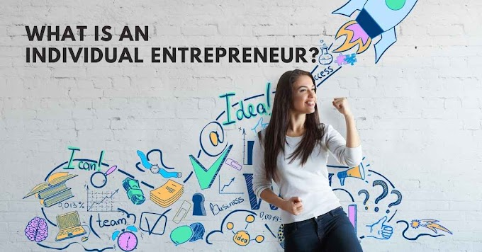 What Is An Individual Entrepreneur?