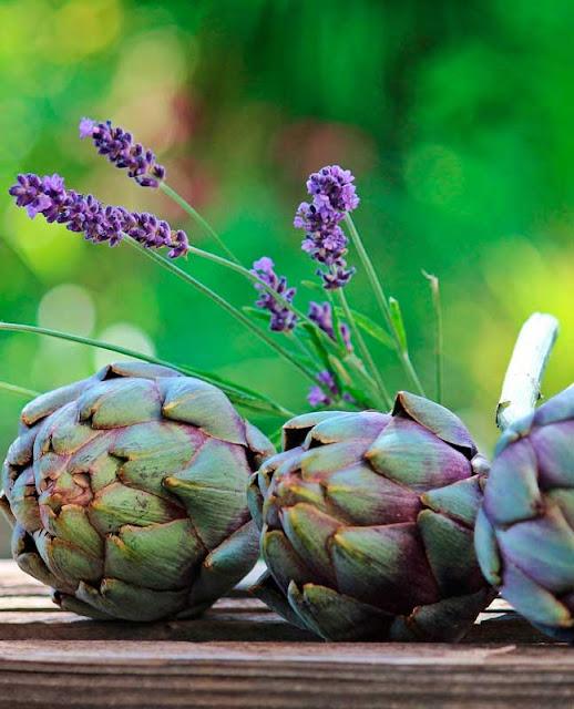 Cómo tomar plantas medicinales para adelgazar
