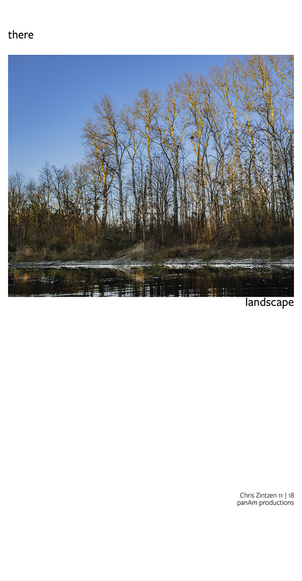 there | wetland | landscape | Chris Zintzen | panAm productions