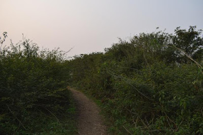 Baikka Beel walkway