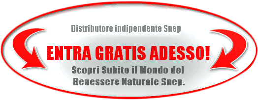 Snep International