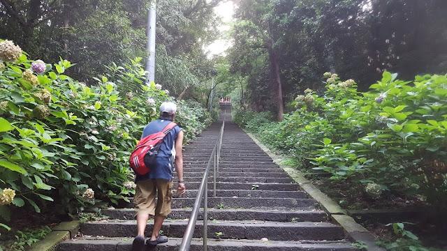 Perjalanan menyeramkan menuju Kanon Sama.