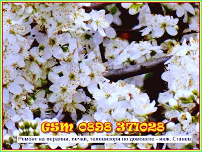 Ремонт на печки в София, пролет, Дебелянов