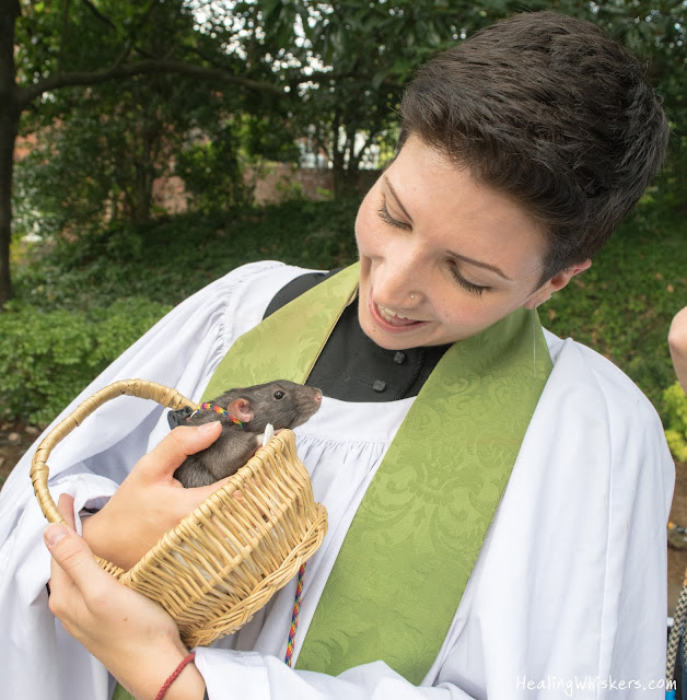 Franklin the therapy rat being blessed