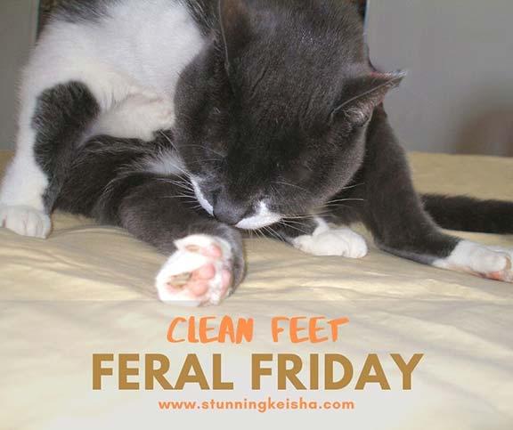 Clean Feet on Feral Friday