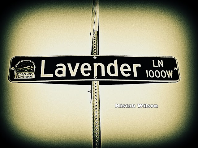 Lavender Lane, La Cañada Flintridge, California by Mistah Wilson