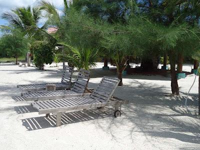 space of happiness latest photos of senari bay resort