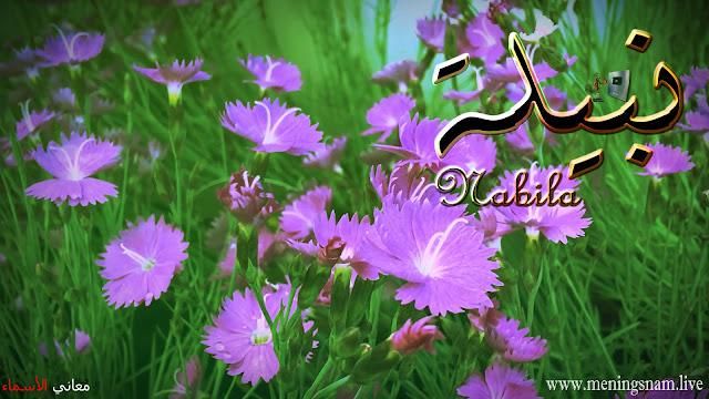 معنى اسم نبيلة وصفات حاملة هذا الإسم Nabila
