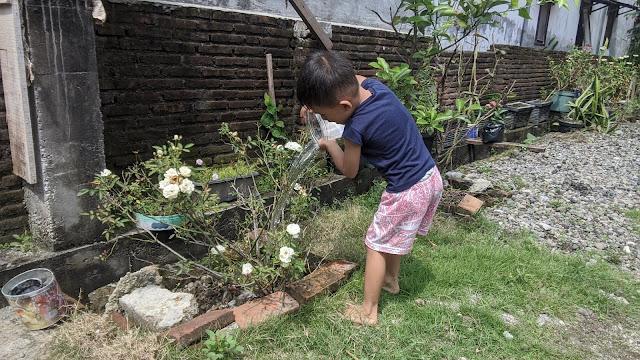kegiatan-menyiram-bunga-anak-balita-di-rumah-selama-WFH-libur-sekolah