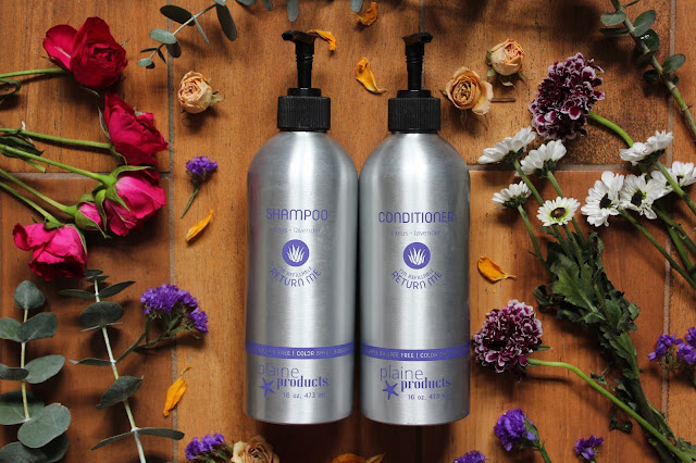 The Best Zero Waste Shampoo + Conditioner