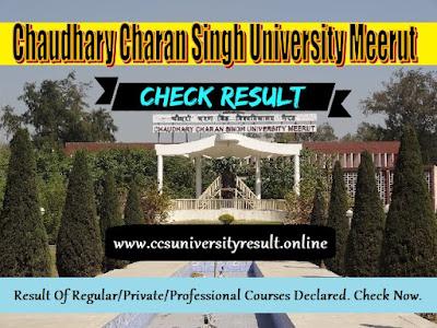 CCS University Result 2021 BA BSc BCom BBA BCA B.Ed