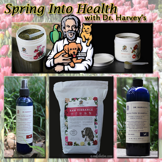Spring Into Health With Dr.. Harvey's contest logo