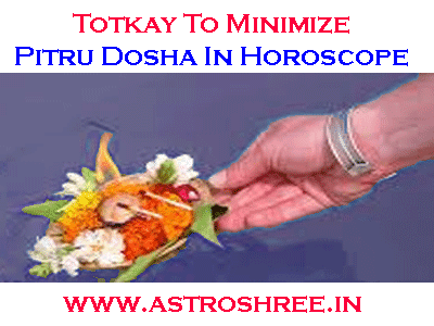totkay for pitru dosha nivaran in horoscope by astrologer