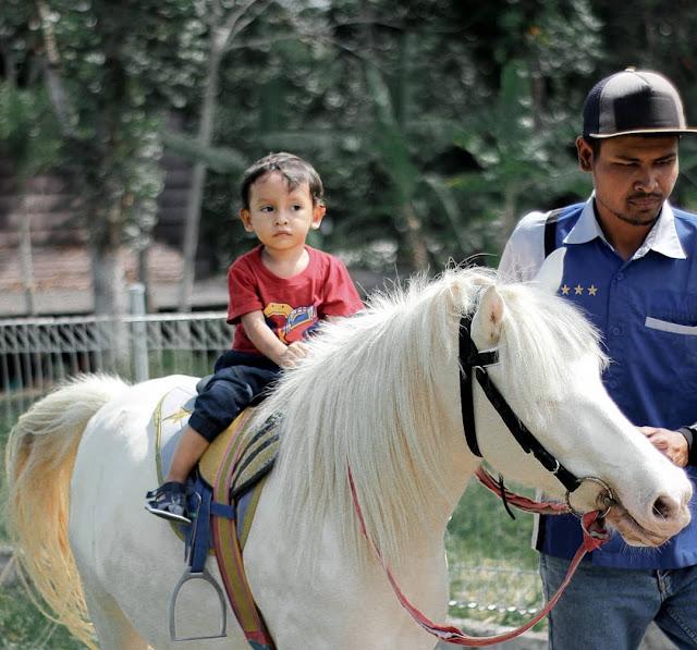 Wisata Edukasi Anak di Sleman