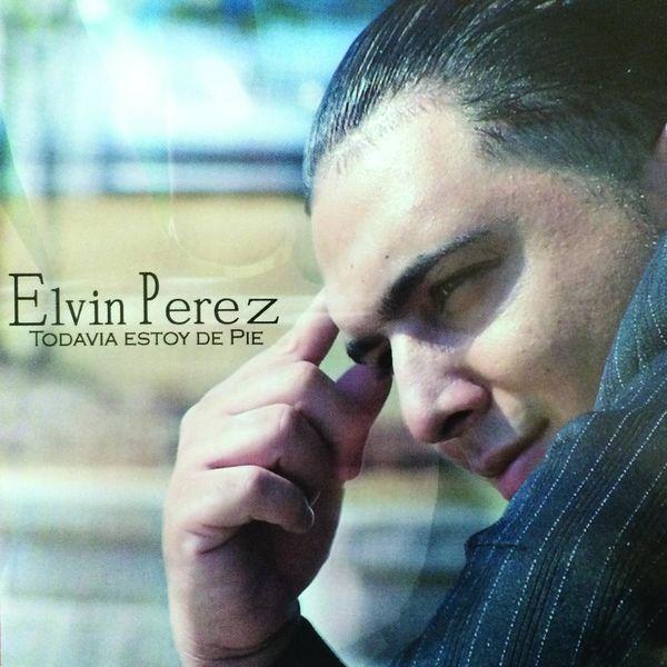Elvin Perez – Todavia Estoy De Pie 2014