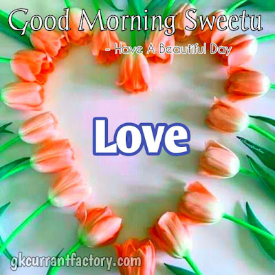 Good Morning Love Images, Good Morning Images With Love, Love Good Morning Images, Love Romantic Good Morning Images, Good Morning Images Love, Good Morning My Love Images, Good Morning Love Images For Girlfriends, Good Morning Love Hd Images