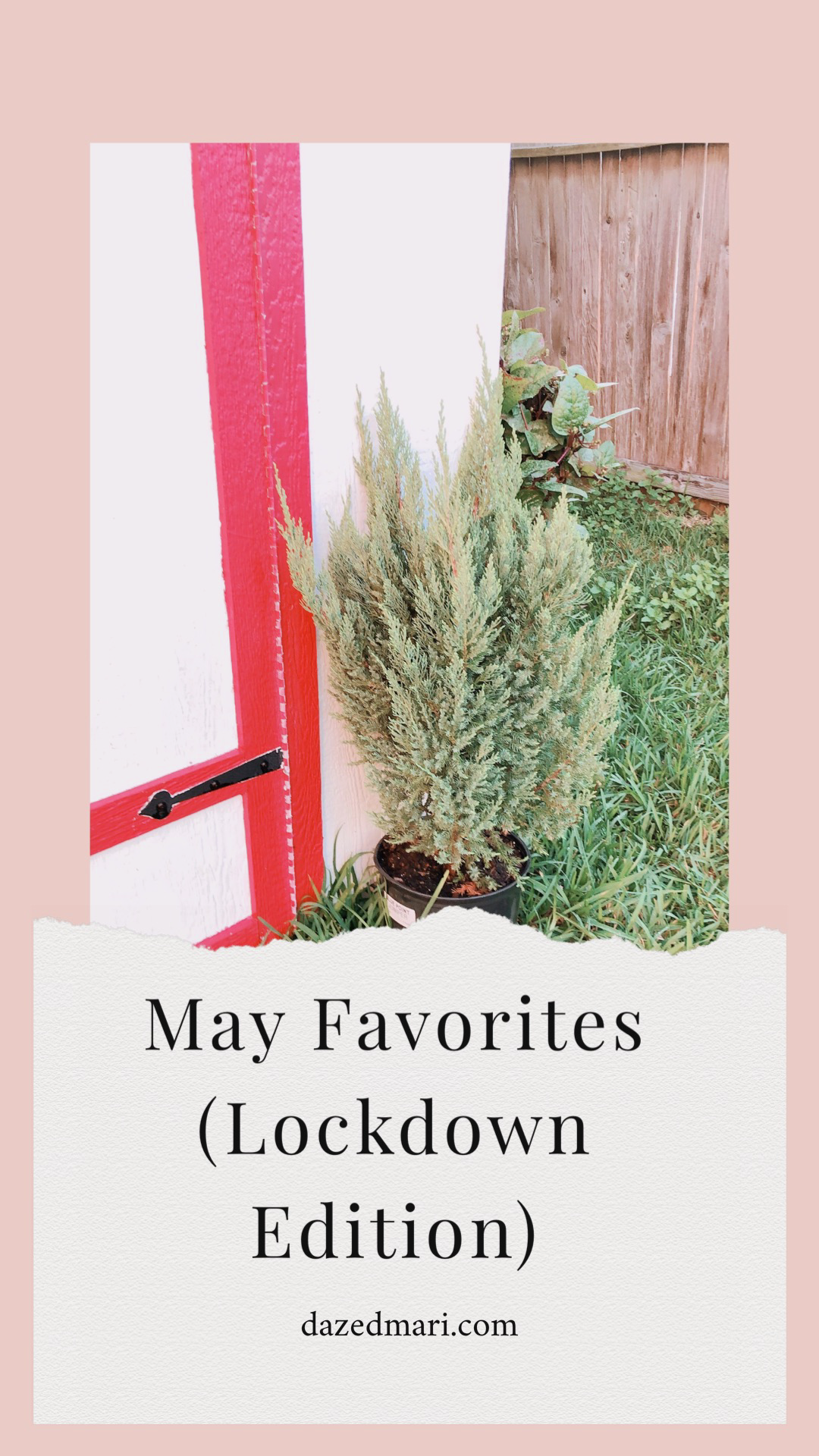 May Favorites, New Finds, Stay Home Favorites, Nature