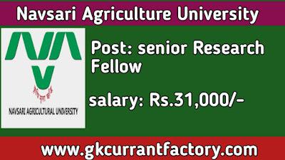 Navsari Agriculture University senior Research Fellow Recruitment, NAU Recruitment