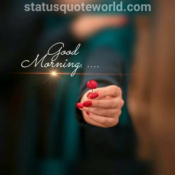 100+good morning quotes to love for whatsapp , facebook ||statusquoteworld