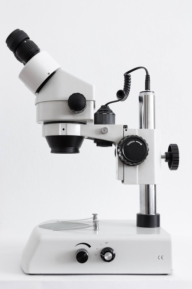 Fields Of Microbiology - Branches   Scopes- Wit Biology