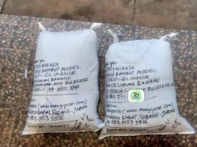 Benih padi yang dibeli   GD. EDDY WIRASA Buleleng, Bali.  (Setelah packing karung ).