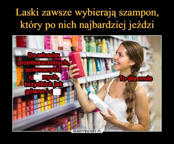 jaki szampon wybrać