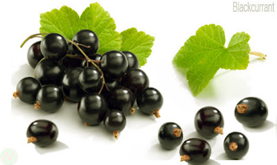 blackcurrant fruit
