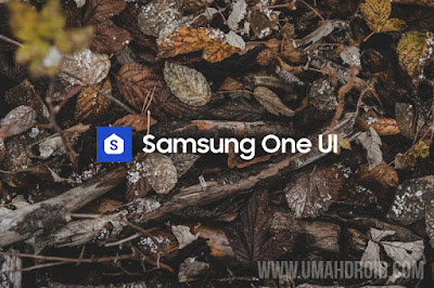 Update Samsung One UI Android Pie