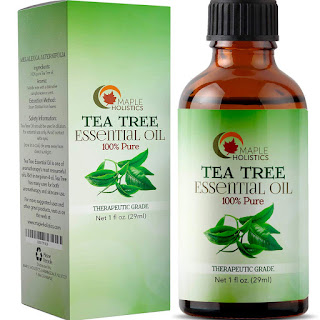 maple holistic tea tree oil