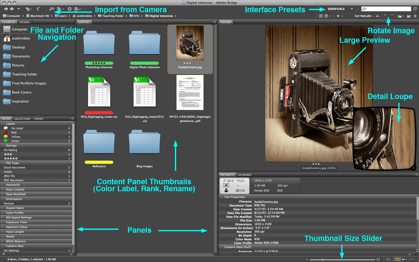 How to use the adobe bridge panels, manage workspaces, change.