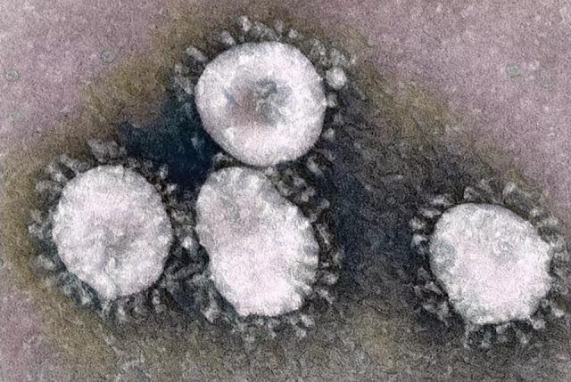 latest coronavirus news : देश में कोरोना संक्रमितों की संख्या की...