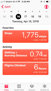 Health app in Terry's Phone Recording Elevation (Flights of Stairs)