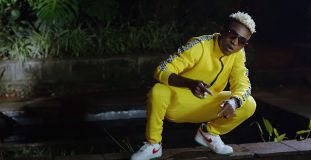 VIDEO | Mr Seed - Siwezi (Official Video) | Mp4 DOWNLOAD