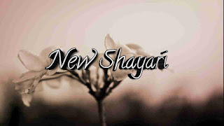 10 Best Romantic Love Shayari In Hindi 2020