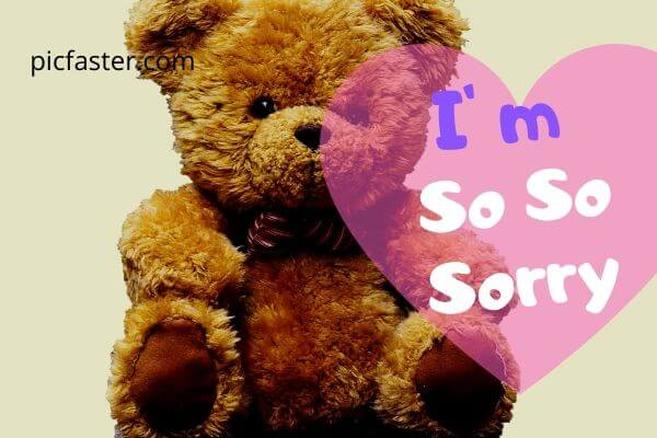 Latest Sorry Images For Lover Free Download 2020