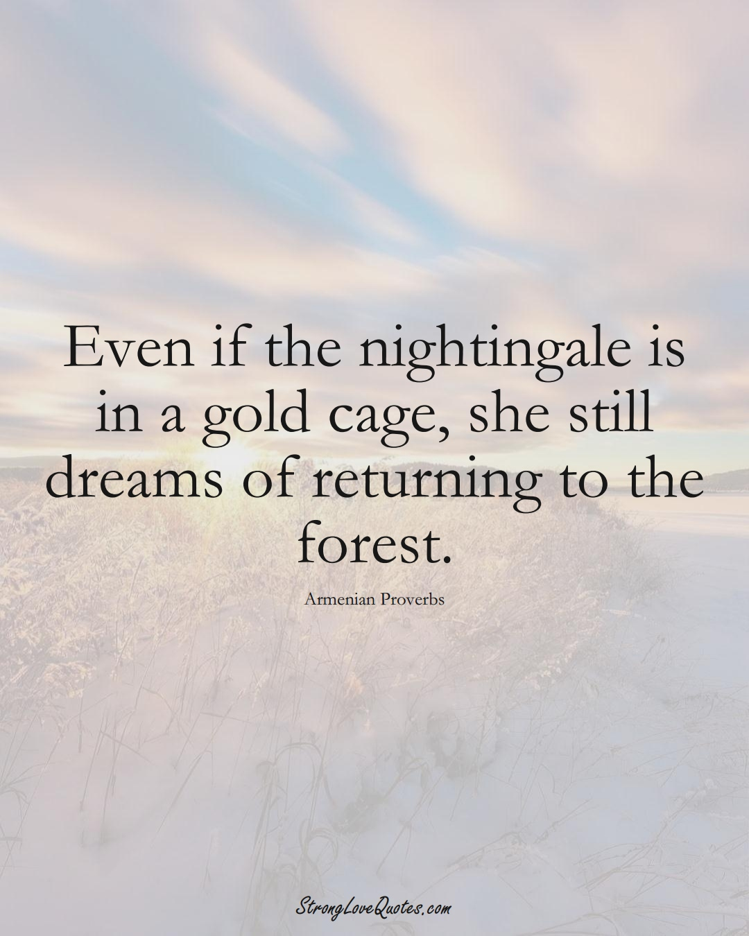 Even if the nightingale is in a gold cage, she still dreams of returning to the forest. (Armenian Sayings);  #AsianSayings