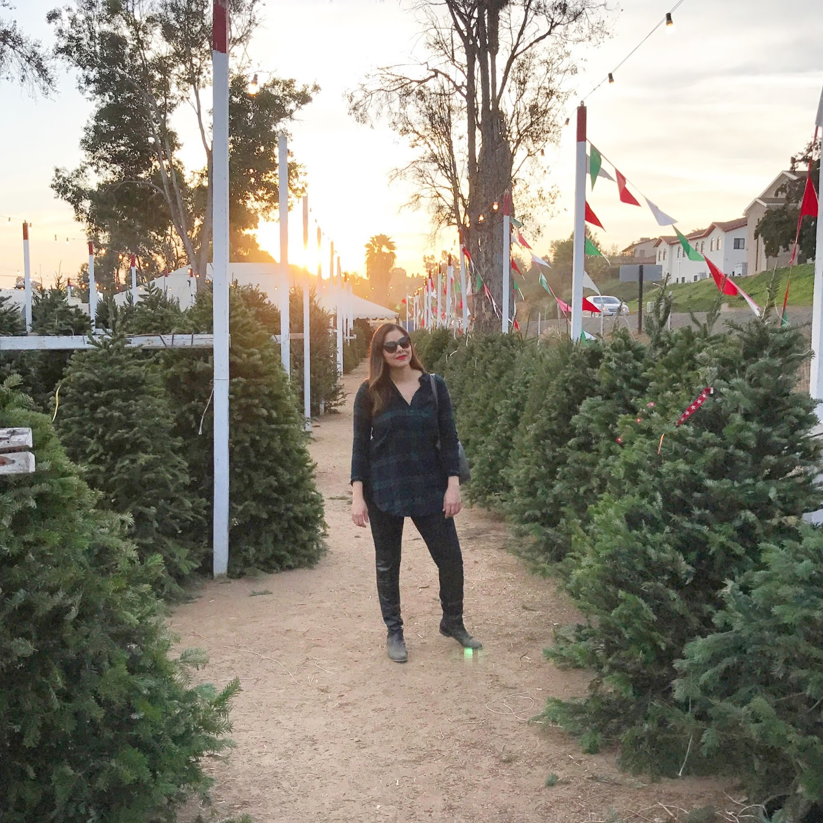 Christmas Tree Picking in San Diego, plaid top outfit, san diego winter style