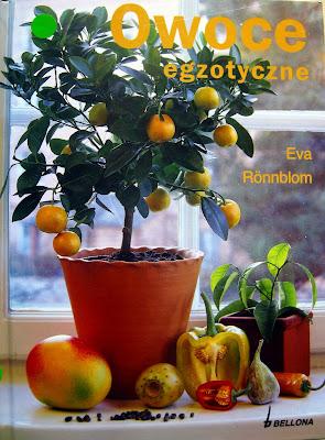 Owoce egzotyczne Ewa Ronnblom recenzja książki, czy wartko kupić, przeczytać, dla początkujących