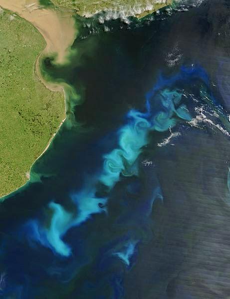 mar-azul-bioluminescência-brilhante
