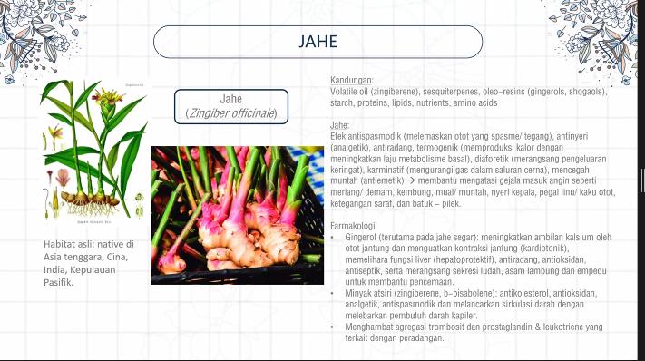 Herbal Jahe untuk Kualitas Tidur