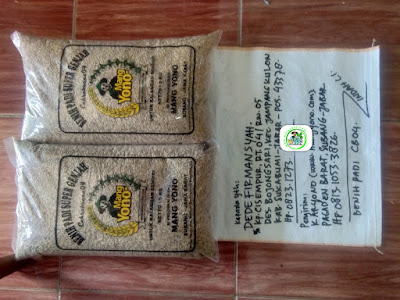 Benih Padi Pesanan  DEDE FIRMANSYAH Sukabumi, Jabar.    (Sebelum di Packing).