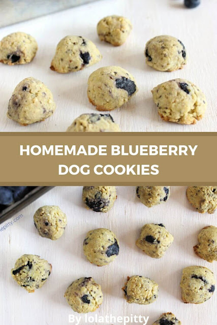 Blueberry Dog Cookies