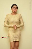 Actress Pooja Roshan Stills in Golden Short Dress at Box Movie Audio Launch  0140.JPG