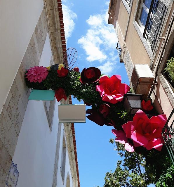abellaeomundo fofurices portugal