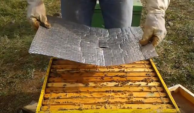 Έξυπνη πατέντα για φουλ θερμομόνωση το Χειμώνα. Τα μελίσσια πάνε σφαίρα (video)